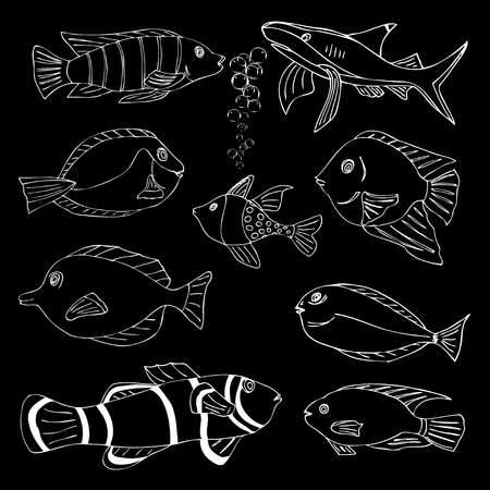 Sketch of sea Fish. Doodle vector illustration Vector
