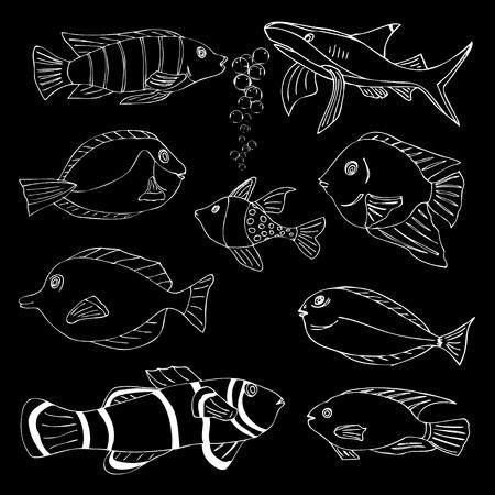 sardine: Sketch von Seefisch. Doodle Vektor-Illustration Illustration