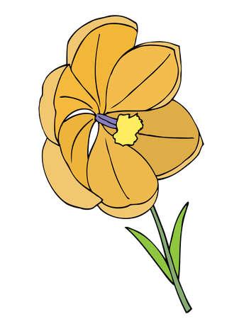 flor aislada: hermosa flor. Aislado en blanco Vectores
