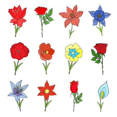Doodles Flowers collection. Vector illustration, Isolated on white Vector