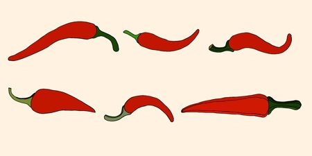 peppers: Set of Peppers, vector illustration. Isolated on white Illustration