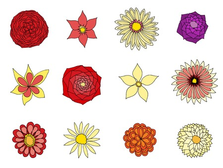 Set of beautiful flowers, illustration, drawn doodle Vector