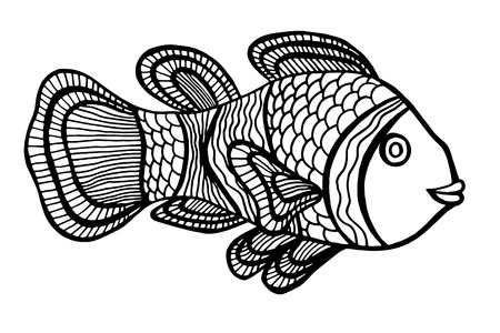 anemonefish: Monochrome Clownfish. Vector illustration. Isolated on white Illustration