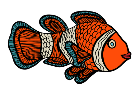 anemonefish: Clownfish. Vector illustration. Isolated on white