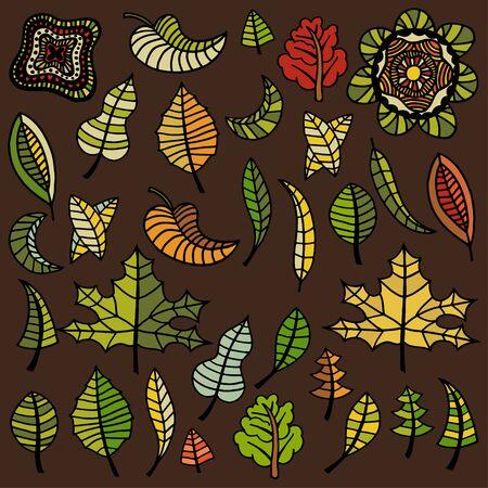 albero nocciola: Grande insieme di autunno foglie di diverse specie di alberi. Schizzo disegnato a mano. Illustrazione vettoriale. Vettoriali