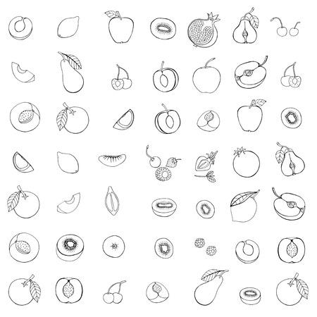 Monochrome  Doodle set of different fruits isolated on white background Illustration