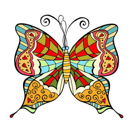 wild life: Amazing fly butterfly isolated, wild life exotic insect. Vector doodle artwork.