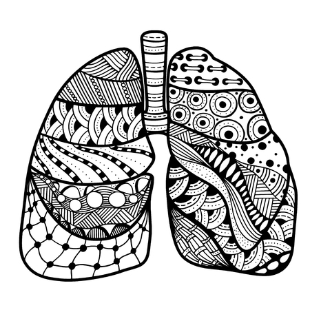 bronchial: Hand drawn sketched lungs in Zentangle style on white paper background. Vector illustration.