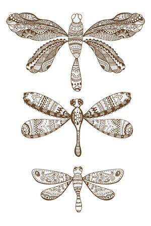 meditative: Set of style dragonflies isolated on white. Hand drawn brown and white vector illustration with abstract pattern. Adult coloring page for meditative relaxation Illustration