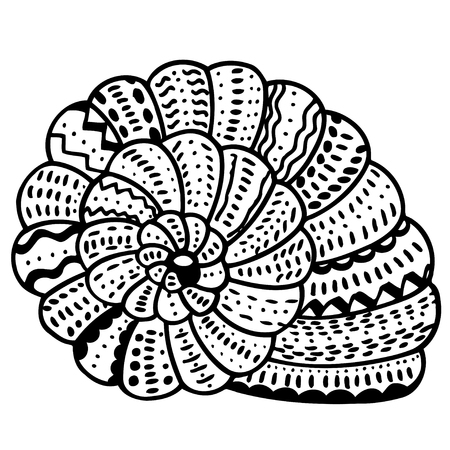 aquatic: stylized shell. Hand Drawn aquatic doodle vector illustration. Sketch for tattoo or makhenda. Seashell collection. Ocean life.
