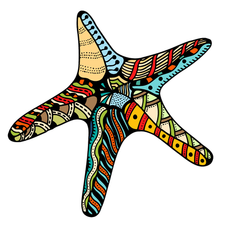 seafish: Starfish.   illustration, isolated on white