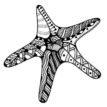 seafish: Starfish illustration, isolated on white