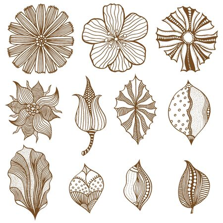 leaf illustration: Set of sketchy Monochrome abstract doodle flowers. Vector illustration. Hand drawn sketch. Isolated on white.