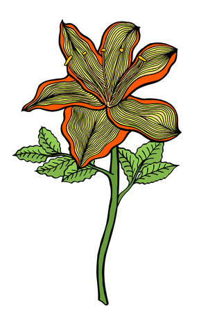 azalea: Colored Hand drawn Flower sketch. Vector Isolated on white Illustration
