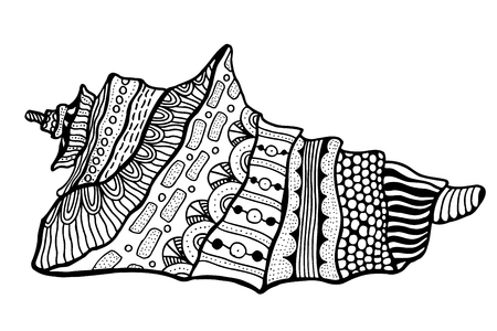 cockleshell: Zentangle stylized shell. Hand Drawn aquatic doodle vector illustration. Sketch for tattoo or makhenda. Seashell collection. Ocean life.