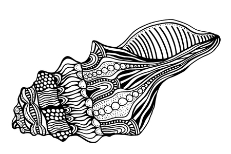 aquatic: Zentangle stylized shell. Hand Drawn aquatic doodle vector illustration. Sketch for tattoo or makhenda. Seashell collection. Ocean life.