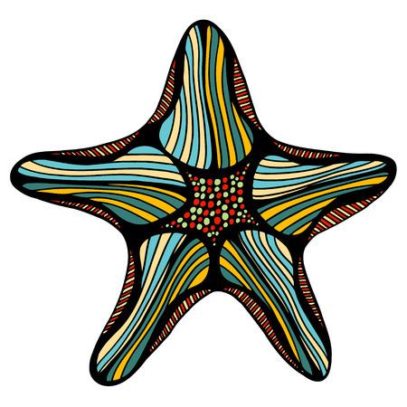 seafish: Hand drawn, sketch illustration of starfish. Vector illustration Illustration