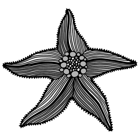 mainstream: Black contour starfish illustration. Black Ink art work. Hand Drawn marine illustration. Vector nautical illustration. Ink drawing sea stars
