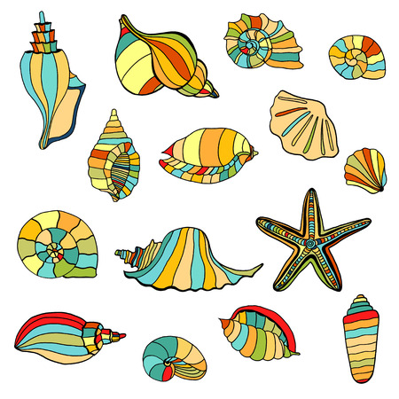 oceanside: Hand drawn shell seamless background. Vector illustration image. Illustration