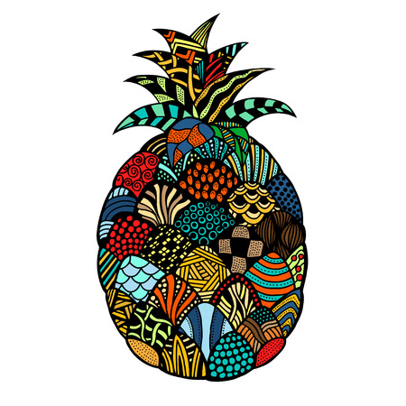 exotic fruit: pineapple. Plant. Exotic fruit. Line art. Colored Hand drawn. Doodle vector illustration. Decorative. Stylized. Tattoo.