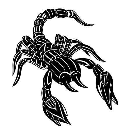 scratchboard: Vector of Abstract scorpion. Line art. Black and white Hand drawn. Doodle vector illustration. Decorative. Stylized. Tattoo.