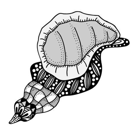 cockleshell: Hand Drawn seashell. aquatic doodle vector illustration. Sketch for tattoo or makhenda. Seashell collection. Ocean life.