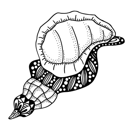 aquatic: Hand Drawn seashell. aquatic doodle vector illustration. Sketch for tattoo or makhenda. Seashell collection. Ocean life.