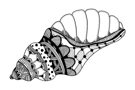 black sea: Zentangle stylized black sea shell. Hand Drawn aquatic doodle vector illustration. Sketch for tattoo or makhenda. Seashell collection. Ocean life.