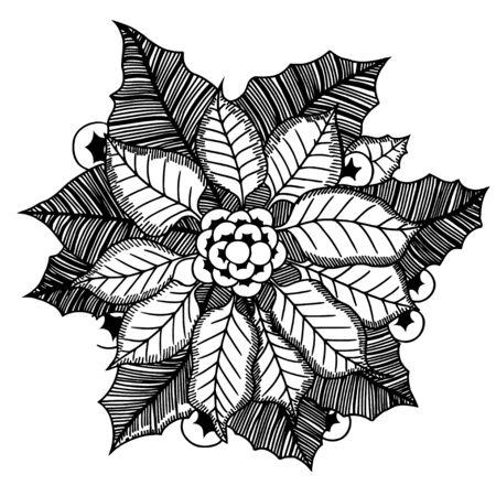 monochrome: Monochrome poinsettia. Vector illustration.