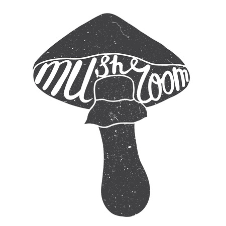 pores: Mushroom graphic drawing trace with art lettering. Vector illustration