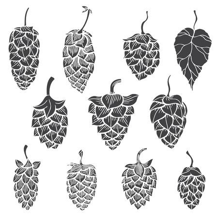 ホップ植物 - 白で隔離ベクトル シルエットのセット  イラスト・ベクター素材
