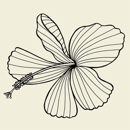 hand outline: beautiful lily painted in a graphic style points and lines. A great figure for a tattoo