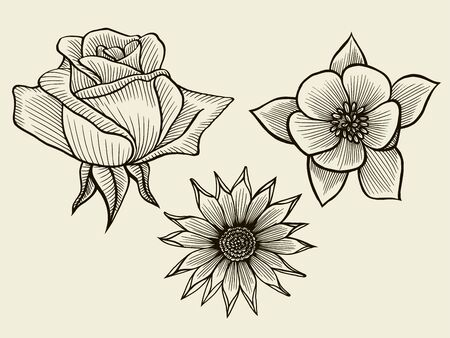 Flowers. Hand drawn sketch flowers, rose, floral pattern Vector illustration