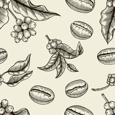 chicchi di caff?: Bacche, foglie, germogli e chicchi di caffè - senza soluzione di modello, line art.