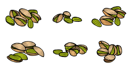 pistachios: Pistachios. Isolated whole and split pistachio nuts and kernels. Vector sketch pistachio element for product label, packaging sticker, grocery shop tag, farm store