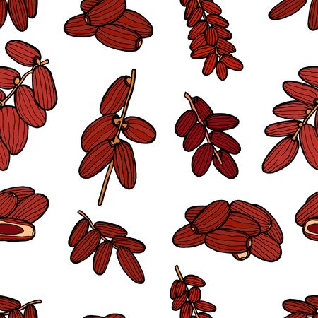 date fruit: Seamless colored Dried fruits pattern. Vector illustration of dates. Illustration
