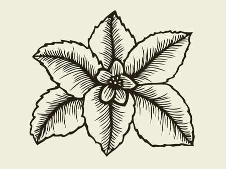 Hand drawn sketch flower with leaf. Vector illustration