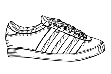 Hand drawn sketch of sport shoes, sneakers for summer. Vector illustration. Sport wear for men and women. Illustration