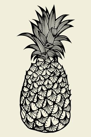 Pineapple fruit. Hand drawn vector sketch on beige