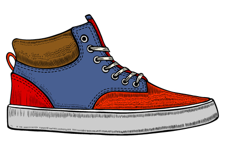 The isolated vector modern red sneakers, illustration