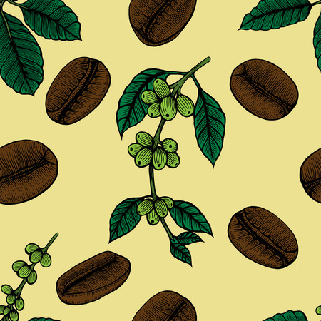 Coffee flowers and berries seamless texture. Hand drawn illustration in sketch style. Illustration