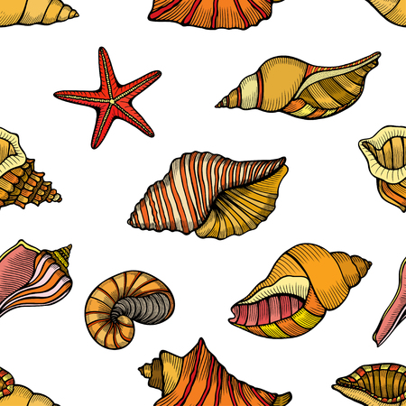 Hand drawn vector illustrations - seamless pattern of seashells. Marine background. Perfect for invitations, greeting cards, posters, prints, banners, flyers etc Illustration