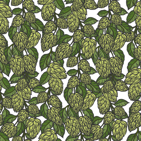 Hop vector seamless pattern. Hand drawn artistic beer green hops with leaves on white background. Vintage wallpaper Illusztráció