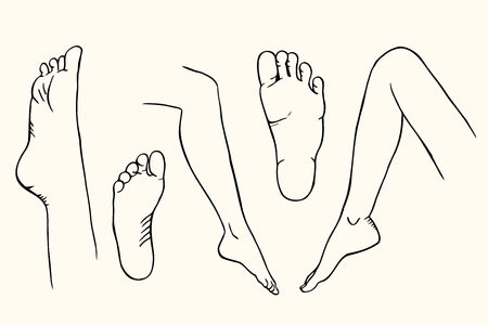 sketch of female legs Isolated on white Illustration