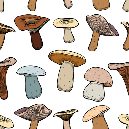 polkadot: Seamless pattern with amanita forest mushrooms - vector outline hand drawn sketch. Collection of different mushrooms with roots, real edible and poisonous boletus