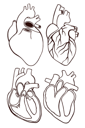 A set of human hearts in isolated background. Vector illustration in engraving style