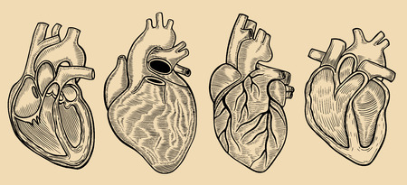 Set of vector engraving heart. Vector hand drawn Isolated on beige Illustration