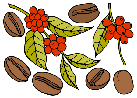 Kaffeezweig mit Blatt und Beere. Handgezeichnete Skizze Stil. Weinlesefarbvektorillustration für Aufkleber, Netz.
