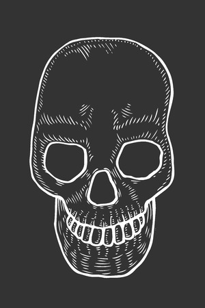 Skeleton of the human head skull, vintage engraved illustration. Isolated on black Vectores