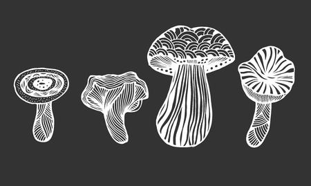 Set of Hand drawn magic mushroom for adult anti stress Coloring Page with high details isolated on white background, illustration in style. Vector monochrome sketch.